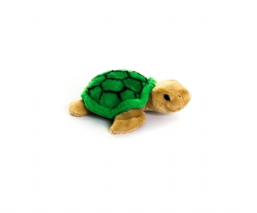Cuddly Turtle - Smol Living Nature (£4.99)