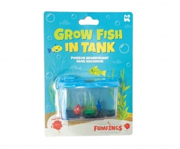 Growing Fish In Tank (£2.50)
