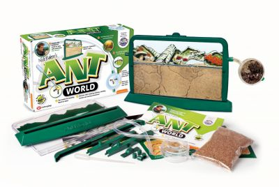 Image 2 of Ant World - Interplay was £15.99  (£12.99)